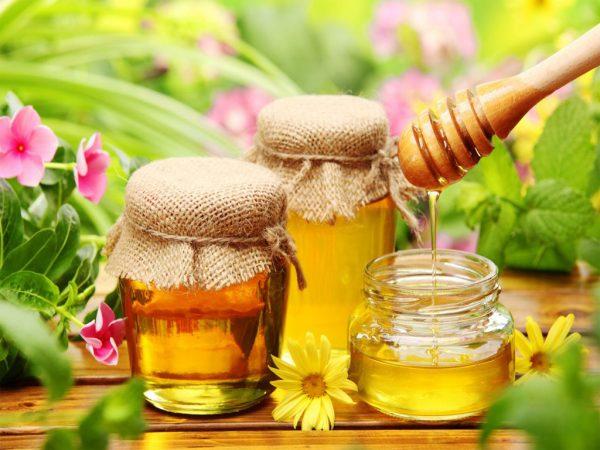 تأثیری که عسل بر درمان بیماریها می تواند داشته باشد