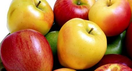 هر چه درباره میوه سیب میخواهید بدانید