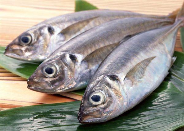 ماهی و اینهمه خواص برای سلامتی