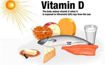 Photo of مواد غذایی که باعث حفاظت از غضروف می شوند و غضروف ساز هستند