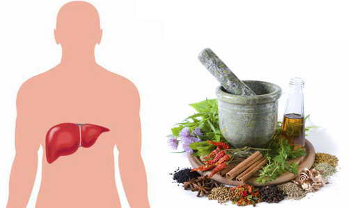 هپاتیت ناشی از مصرف گیاهان دارویی
