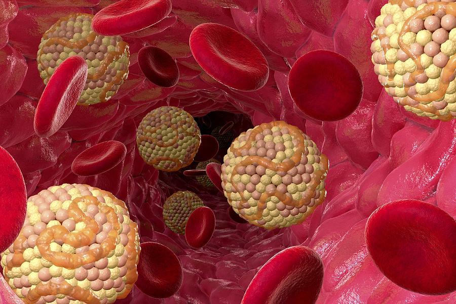 Photo of باورهای اشتباه در مورد کلسترول خون