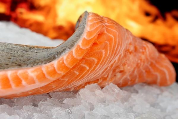 چگونه بفهمیم کنسرو ماهی سالم است؟