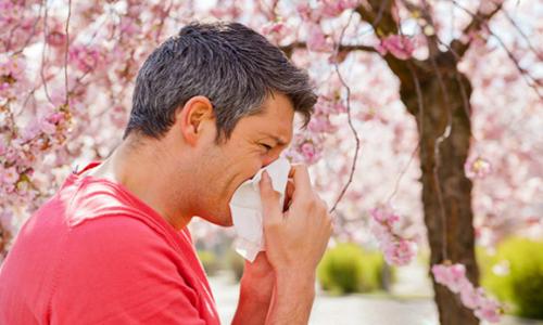 Photo of حساسیت فصلی در فصل بهار و درمان آلرژی فصل بهار