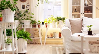 چگونه انرژی منفی را از منزلمان دور کنیم؟
