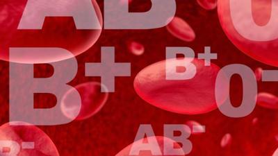 گروه خونی گزیدگی حشرات