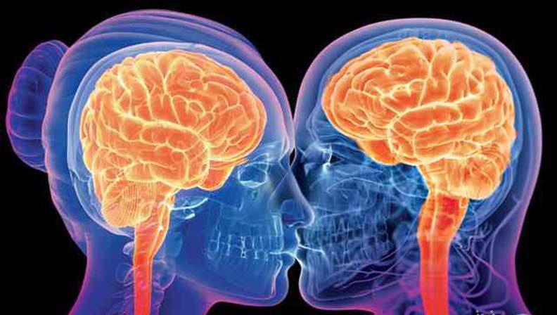 Photo of رابطه جنسی و تحریک جنسی چه تاثیری بر مغز دارد؟