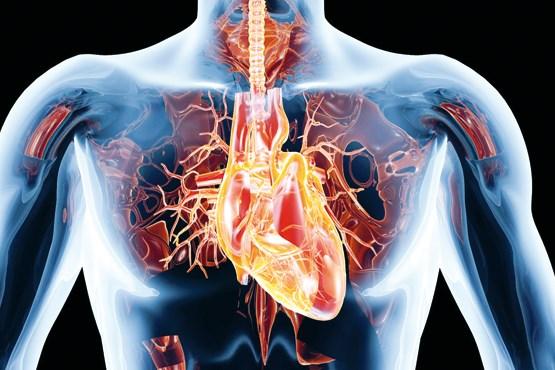 خسته شدن قلب از ورزش و درد قفسه سینه و تپش پس از تمرین