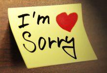 Photo of تاثیر عذرخواهی در زندگی مشترک + روش های معذرت خواستن از همسر