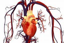 Photo of دوبوتامین (Dobutamine) برای نارسایی قلب + نحوه مصرف و عوارض این دارو