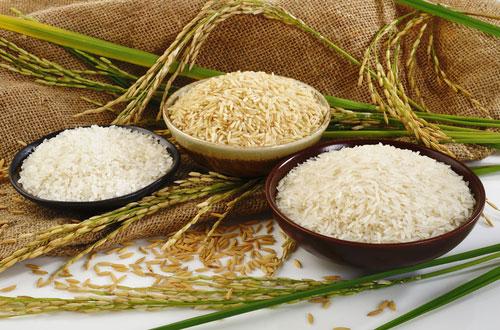 رژیم لاغری برنج